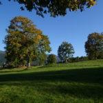 奥志賀の草原