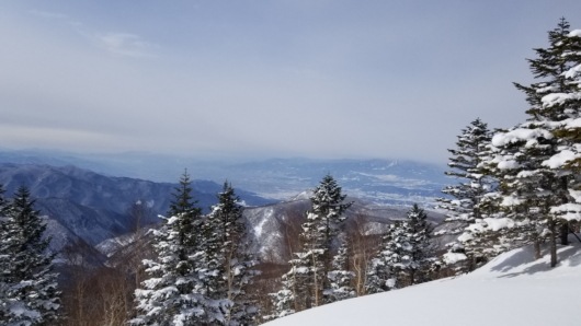焼額山パノラマコースからの眺望。