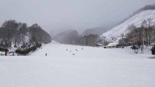大粒の湿雪が降る尾瀬岩鞍。