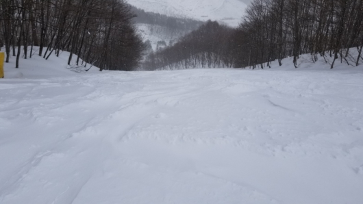 一見気持ちよさそうなのだが、重い湿雪で苦しめられた。