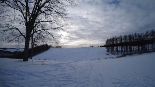 ゲレンデの奥にある「バックカントリー」の丘。