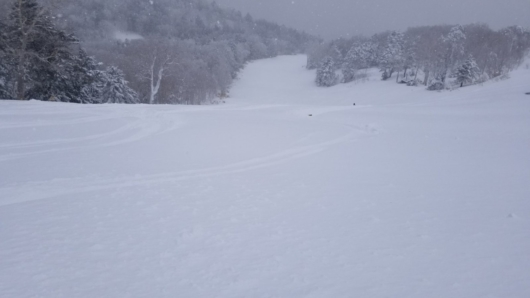 東館山オリンピックコース。一見気持ちよさそうな新雪だが、重い湿雪の上、下にはコブが隠れている。