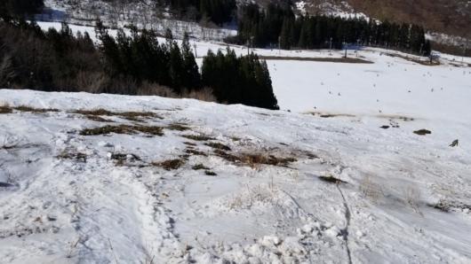 草原と化したヘラクレスコース。